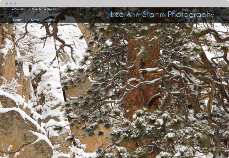 Redframe Photography Websites Client Example - Lee Ann Stamm Photography