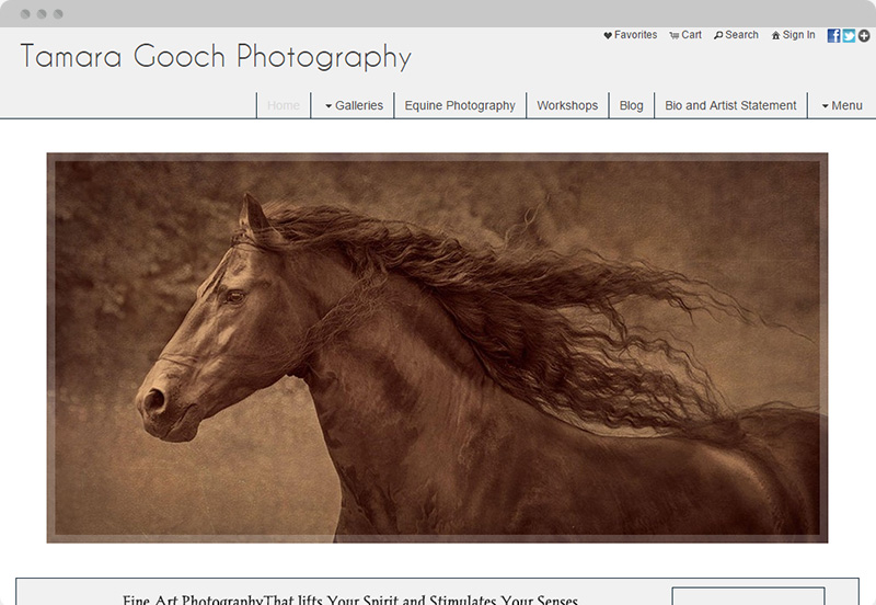 Redframe Photography Websites Client Example - Tamara Gooch Photography